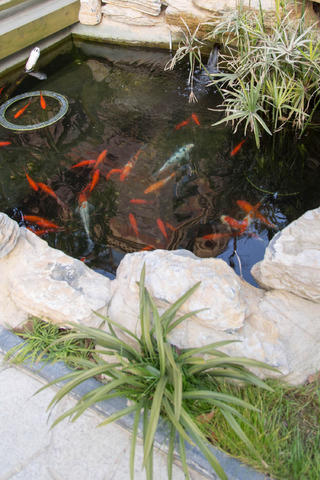 中式别墅装修花园浴池欣赏