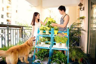 120平地中海之家阳台绿植