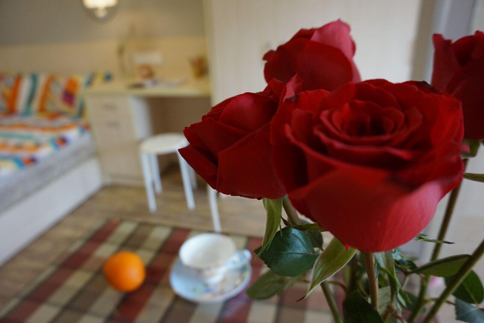 小户型一居室装修玫瑰花装饰