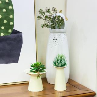 50㎡小户型混搭风装修花瓶绿植图片