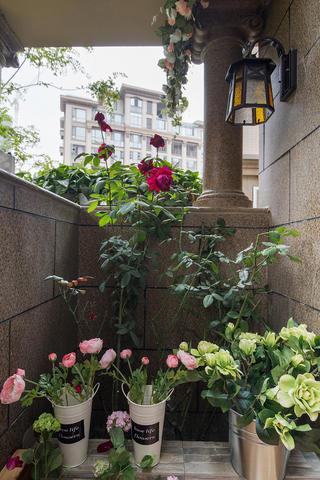 三居室美式风格家阳台花卉区
