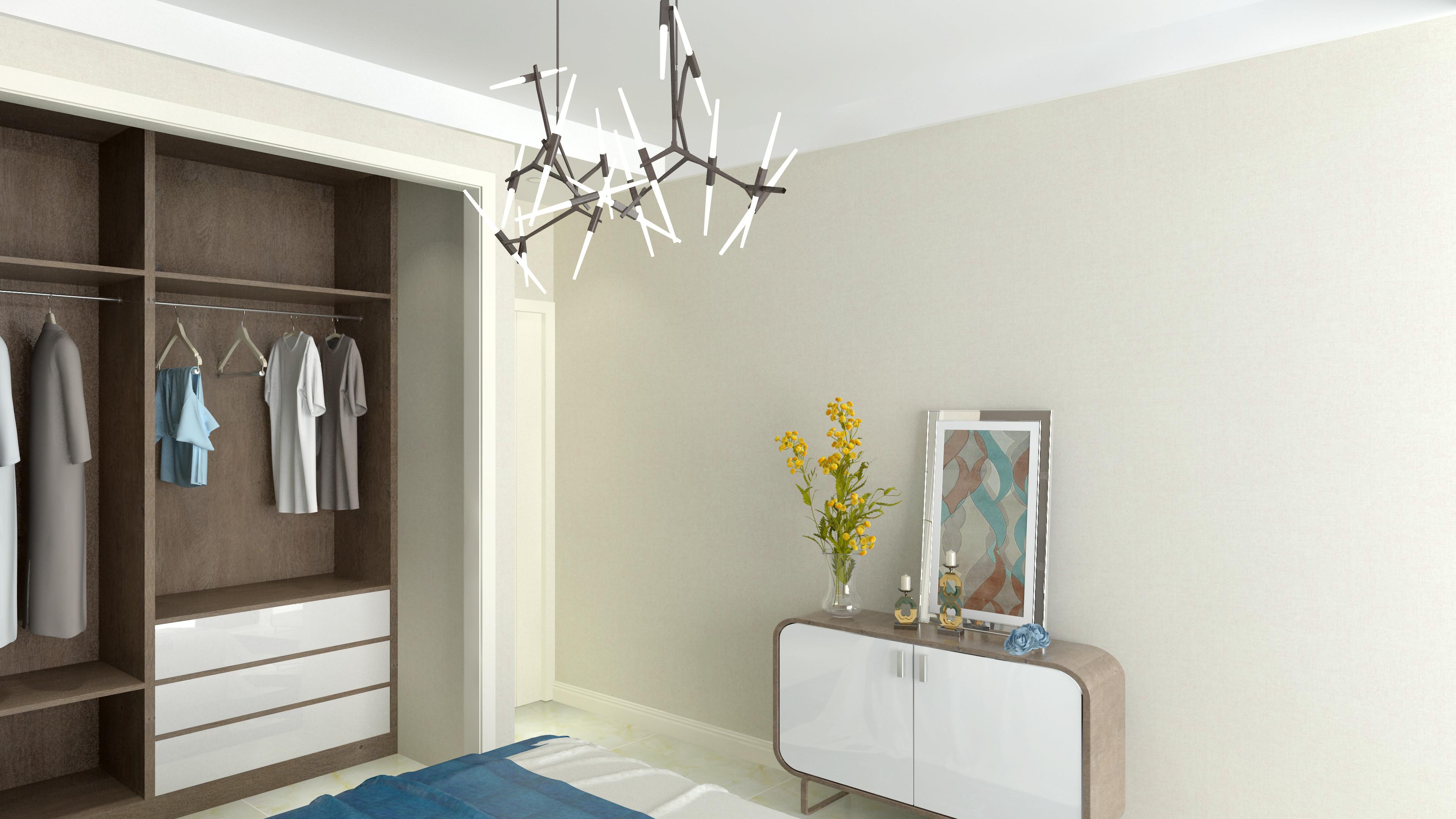 70平二居室装修衣柜图片