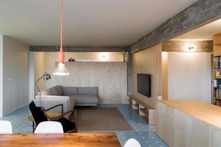 公寓简约装修客厅效果图