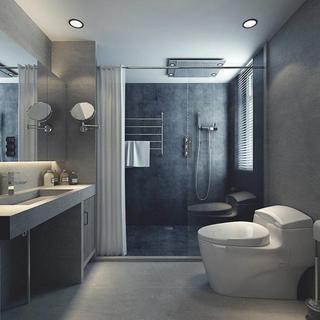 loft二居室装修卫生间设计图