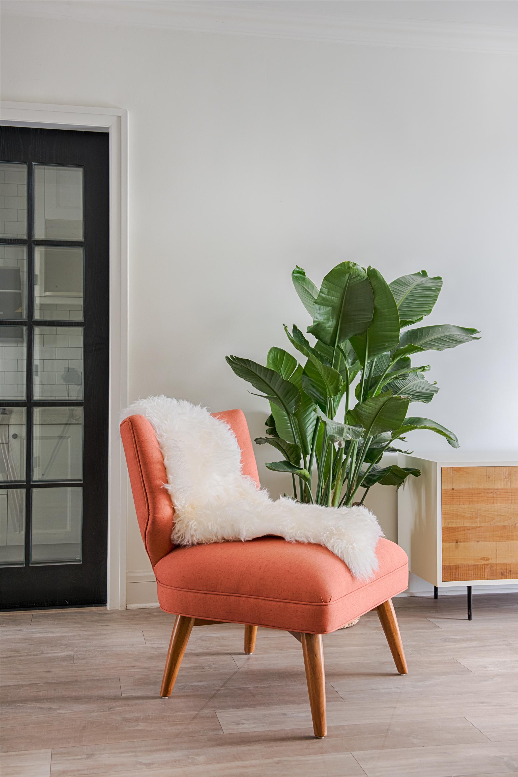 北欧风格家单人沙发图片