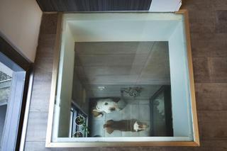 酒店式公寓装修卫生间顶部开窗设计
