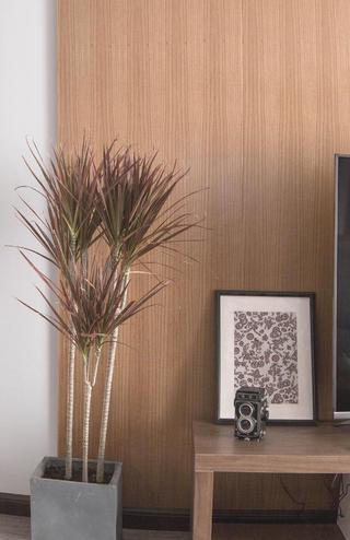 130㎡三居室装修电视背景墙一角