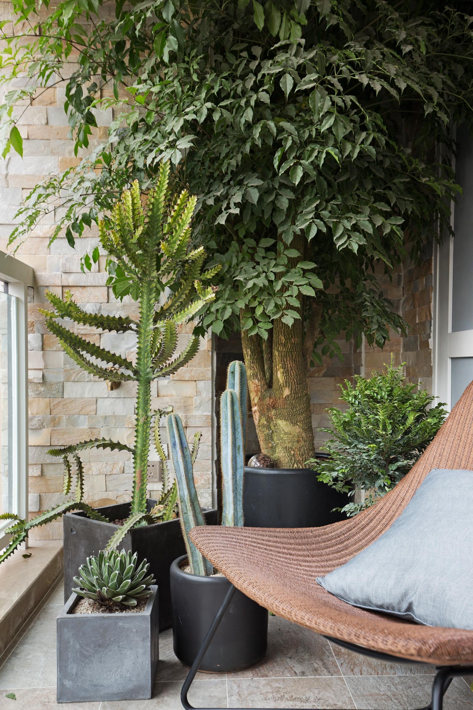 别墅混搭装修阳台绿植图片