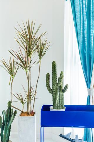 180平混搭风格设计绿植图片