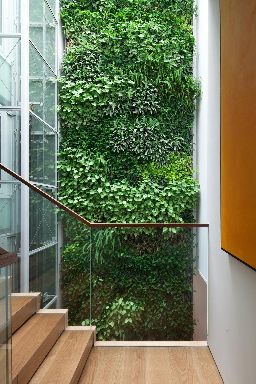现代风别墅绿植墙装修效果图
