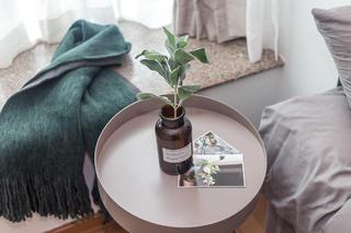 60㎡绿色两居室装修床头小景
