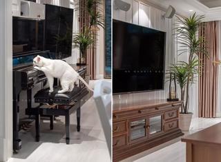 180平美式风格电视墙装修效果图